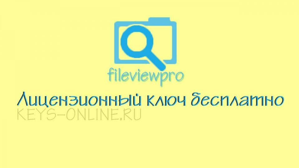 Ключ для fileviewpro лицензия бесплатно